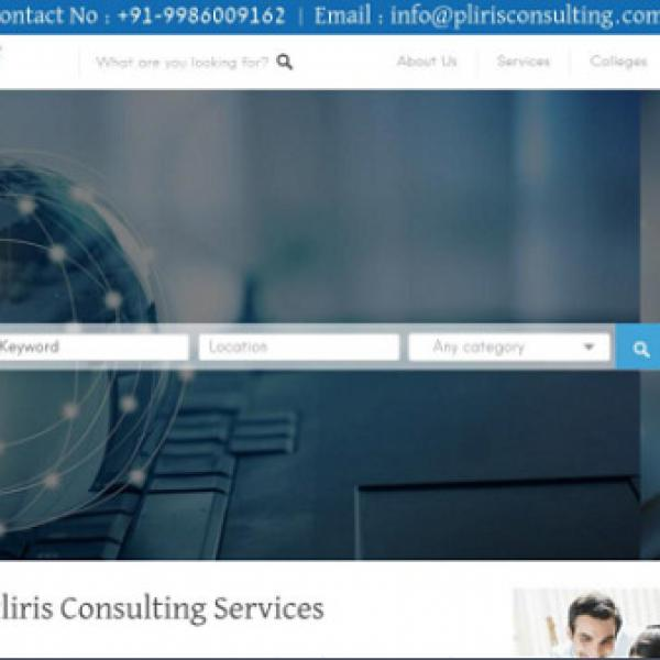Pliris Consulting
